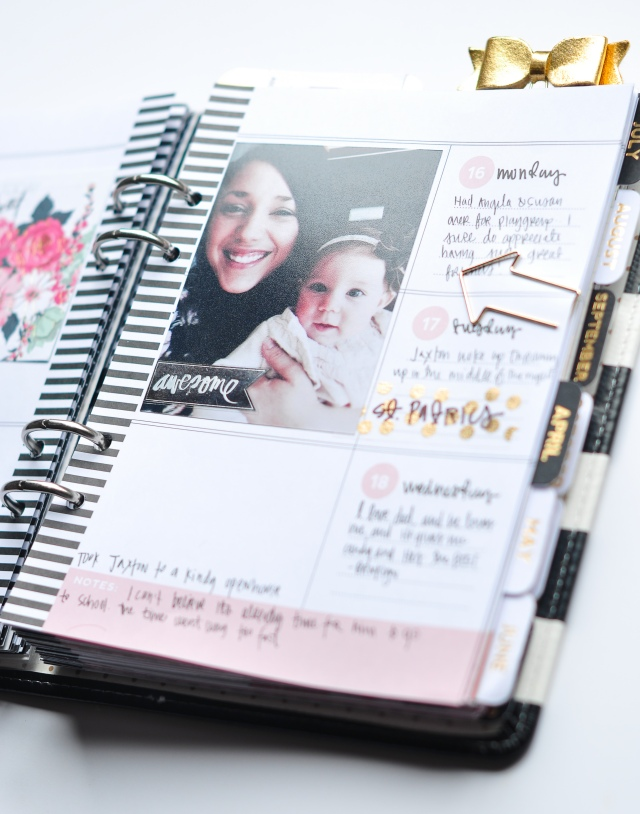 Alexes Brown - Heidi Swapp Planner -1